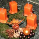 Adventni venčki 2007