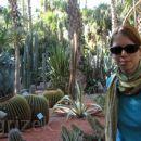Vrt kaktusov YSL, Maroko