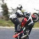 Moto Stunt