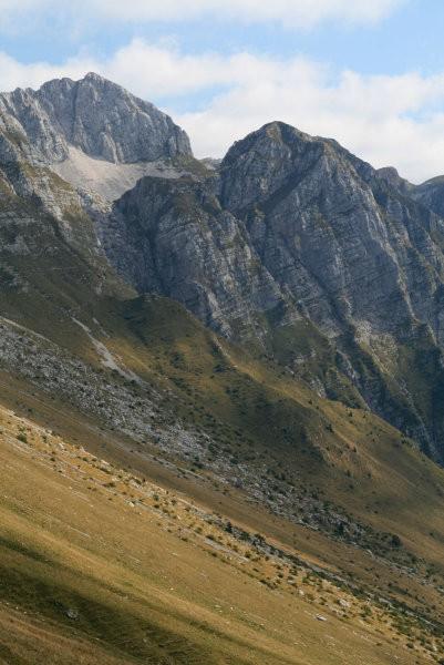 Škofič, Maselnik