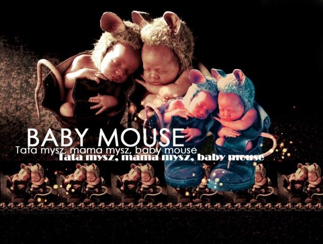 Tata mysz, mama mysz, baby mouse