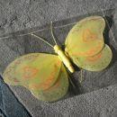 tegale prečudovitega rumenega metulja je od Ariele dobila Sončka, ki je nora na metulje in