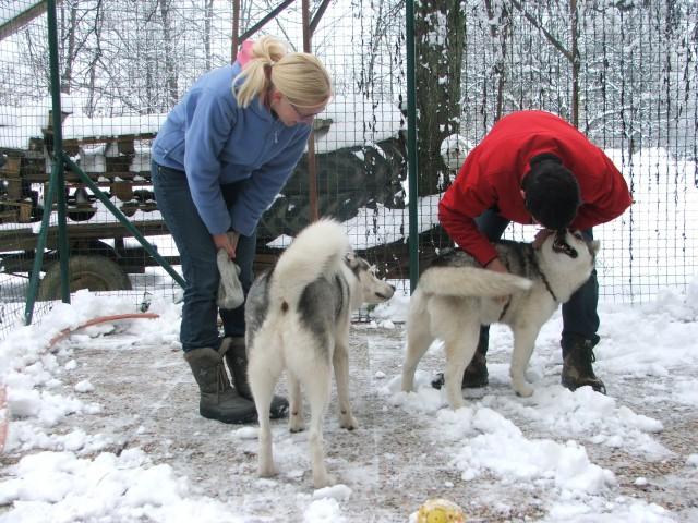Zima 2008 - foto