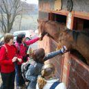 Prijazne živali, prijazni pohodniki