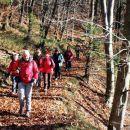 Spust po kratki, a strmi gozdni poti