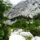 V zatrepu gora, ki zaokrožujejo Okrešelj
