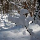 Take snežne kompozicije so ustvarjali sneg, veter in sonce