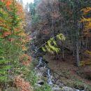 Pot največji del poteka ob potoku Jerman