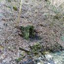 Eden od zazidanih studencev