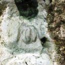 Skrivnosti odtis v skali