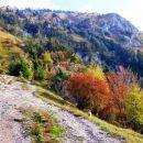 Narava nam je vso pot razkazovala svoje pastelne jesenske barve