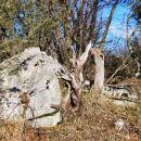 Tihožitje lesa in kamna, le vode ni nikjer, razen v štirnah in kalih