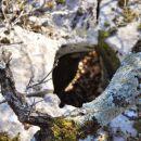 ... pravilno oblikovanih lukenj v skalo, ...