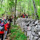 ... ki nas je vodila ob kamniti meji državnega gozda, ...
