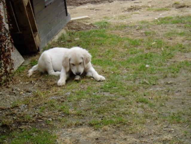 Marec 2006 - foto