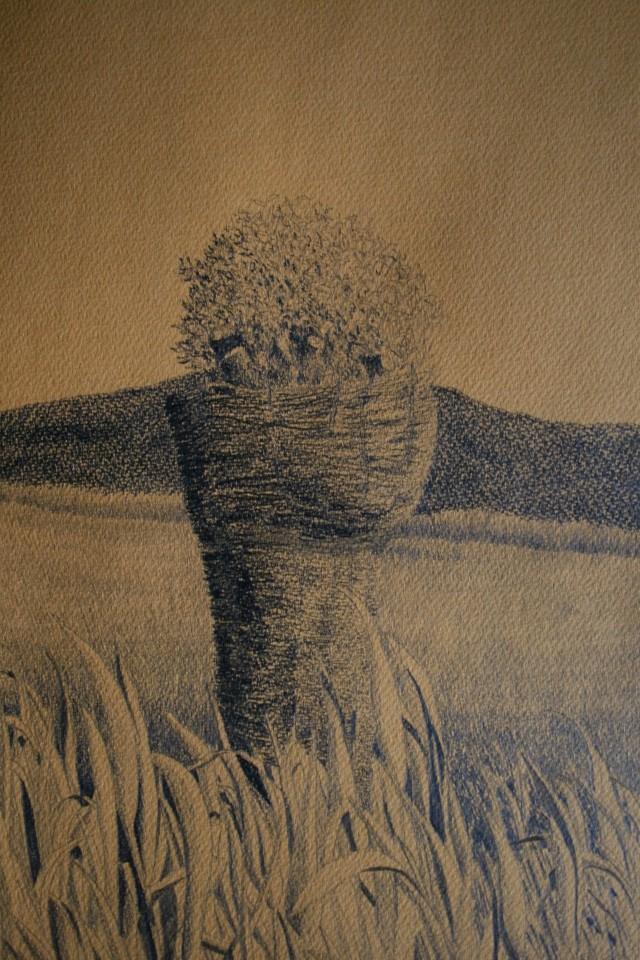 grafit na papir, 54x37, 2007