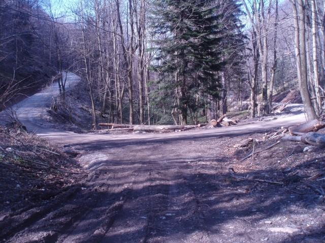 Levo cesta na vrh Boča k stolpu, desno proti Podboču-Poljčanam
