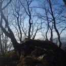 Dreveniška gora  nad rastiščem velikonočnic na Boču in pred zahodom sonca...