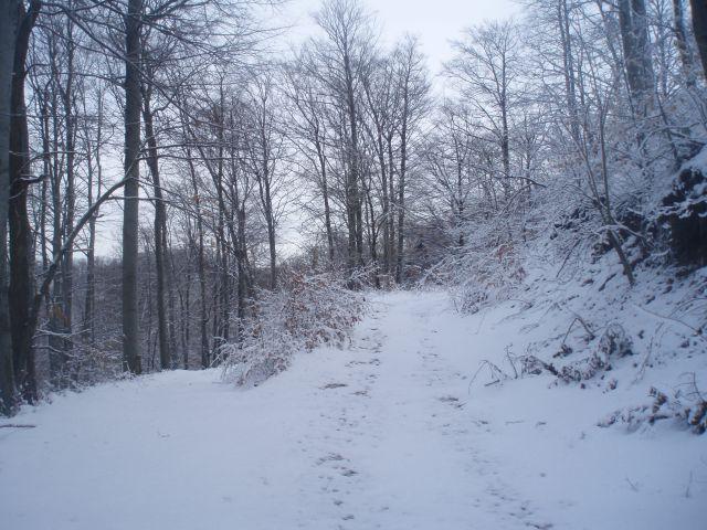 ...pod severnim delom Velike kope nad Makolami...
