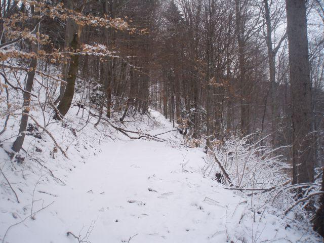 ...res prava zimska idila v neskončni snežno, delno ledeni belini Boča in Plešivca...