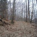 ...in tudi skozi gozd...