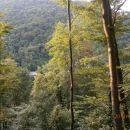 ...pogled na sosednji hrib - predor Golo rebro vstop iz smeri Celje...