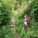 ...še en kamniti del poti proti vrhu...