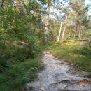 ...izhodišče dolina potoka Bela...
