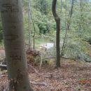 ...pogled navzdol in kar veliko je loma v gozdu...