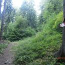 ...na izhodu iz gozda...