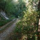...in po gozdni cesti...