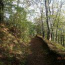 ...in po zanimivi gozdni poti...