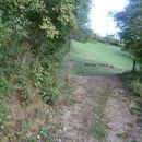 ...preplet gozda, travnikov in pašnikov je izrazit...