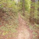...gozdno pot seveda končno...