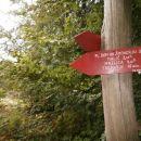...in spust v dolino...Tremerje seveda, do tukaj pot poznana...
