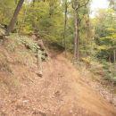 ...po označeni planinski poti seveda ostro v hrib...