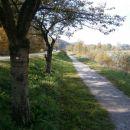 ...nadaljujem po desnem bregu Savinje proti toku...