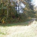 ...po travniku...