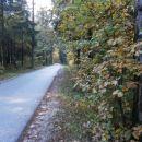 ...sledim cesti...