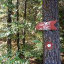...in odcep na levo, gozdna pot...