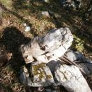 ...ob klopi, kamen imenovan verjetno !? Konjska glava...