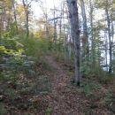 ...v prijetnem gozdu...