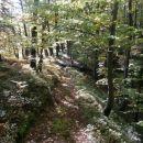 ...na začetek naselja Košnica...