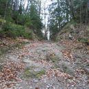 ...morda celo najlepši odsek poti na Mrzlico iz Trbovelj...
