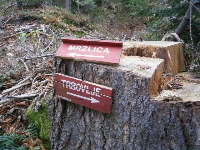 ...padlo je drevo on zlomila se je tabla z napisom...pomenljivo...