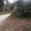 ...gozdne ceste v zadnjem delu pred Šmohorjem...