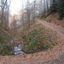 ...in levo od gozdne ceste...