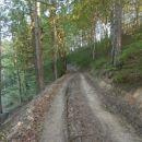...nadaljevanje in spust skozi prijetno planjavo preko Čobeca...