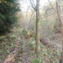 ...ožja gozdna pot/planinska in tudi CPP...