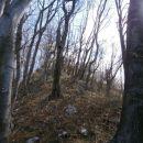 Celjsko hribovje nad Štorami in Celjem